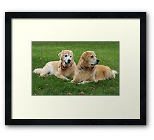 Handsome Guys! Featured Photo Framed Print
