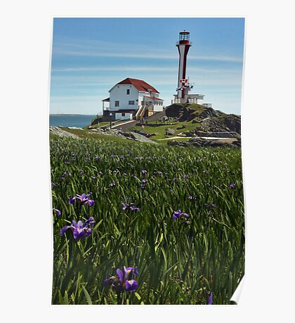 Cape Forchu Lighthouse and Irises II Poster