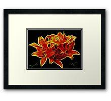 Unique Lilies Framed Print