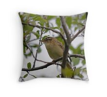 Willow Warbler  (i think) Throw Pillow
