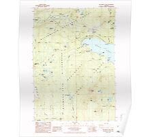 USGS Topo Map Oregon Willamette Pass 282100 1986 24000 Poster