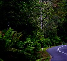 The long and winding road by myraj