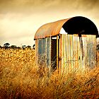 Weird little tin shed by Tracie Louise