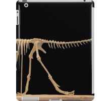 Ancient Compsognathus iPad Case/Skin