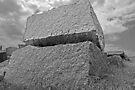The Monolith  by John  Kapusta