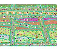 Produce Pattern Photographic Print