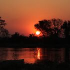 Sunset on The Okavango Delta, Botswana by JenniferEllen