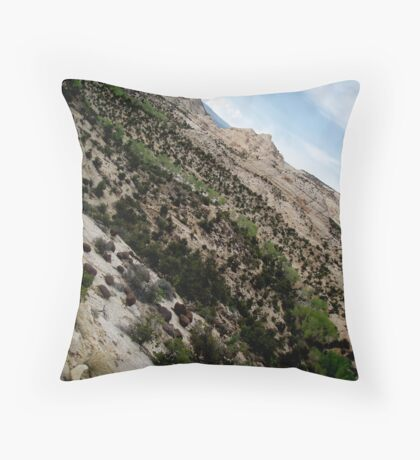 Dry Hollow Curves Throw Pillow