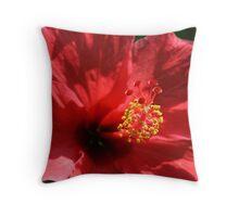 Summer's Red Flower Throw Pillow