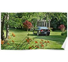 The Back Yard In Full Spring Splendor  Poster