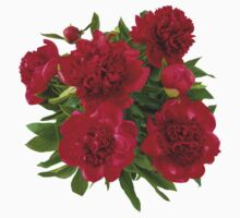 Red peony bouquet Kids Clothes