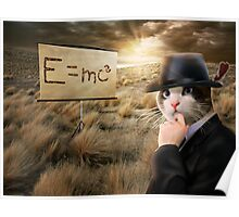 Gentleman Cat Is Thinking About Einstein's Physics Poster