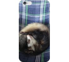 Bean The Ferret iPhone Case/Skin
