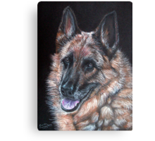 Just a Dog? Canvas Print