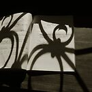 Writings of the spider by ragman