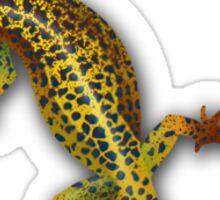 Gecko Web Design Sticker