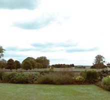 Charlecote Panoramic by Kevin Miller