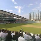 Evening at cricket by Steven Mace