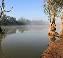Morning mist at Paringa,S.A. by elphonline