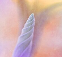 Spirit of nature by Maria Ismanah Schulze-Vorberg