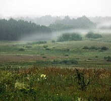 Fog layers in early morning by Antanas