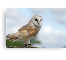 beautiful owl  Canvas Print