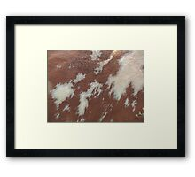 Fur Abstract Framed Print