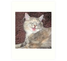 cute kitten smiling  Art Print