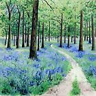 Bluebell Woods, Forest of Dean by Helen Lush