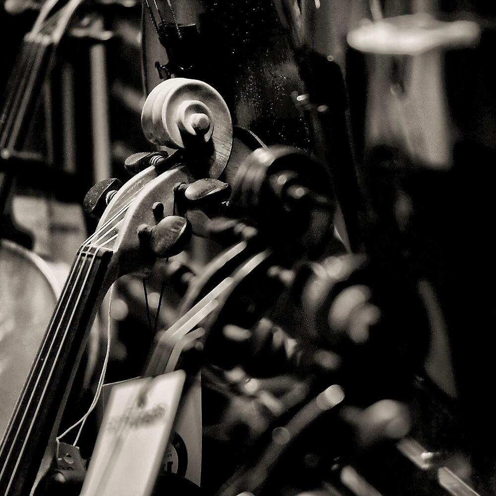 Twirl Ratio by Paul Louis Villani
