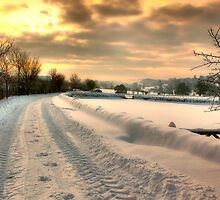 A reminder of Winter by Cat Perkinton