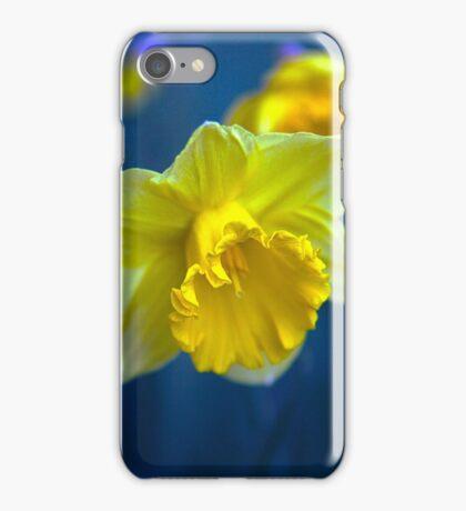 Daffodil In Bloom iPhone Case/Skin