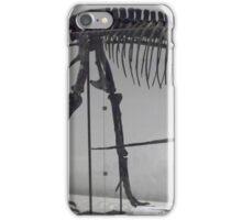 Ancient Albertosaurus iPhone Case/Skin