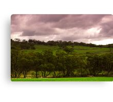 The Rain came and the Earth turned Green Canvas Print