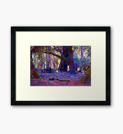 Forest Scape I Framed Print