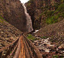 Walkway to Njupeskär Waterfall by Jo Nijenhuis