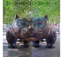 P1420666-P1420665 _XnView _GIMP Photographic Print