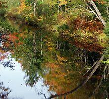 Twice the River by Lynda Lehmann