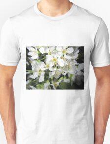 Cherry tree T-Shirt