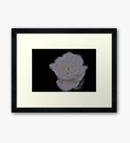 Vanilla Framed Print