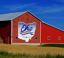 Ohio Bicentennial Barn by Marcia Rubin