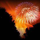Happy 4th, 2011 !!! © by Dawn M. Becker