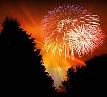 Happy 4th, 2011 !!! © by Dawn M. Becker