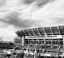 Cleveland Browns Stadium by Marcia Rubin