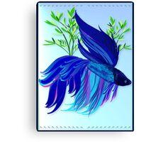 Big Blue Siamese Fighting Fish Canvas Print