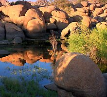 Granite Reflection by Candy Gemmill