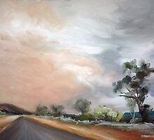 Dust Storm from Honeymoon Gap, Ilparpa Rd, Alice Springs by alstrangeways