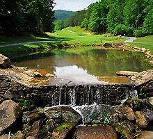 Rumbling Bald Golf Course by triciamary