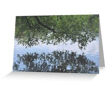 Lost in reflection.... Greeting Card