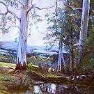 By Heysen's Pool by Lynda Robinson